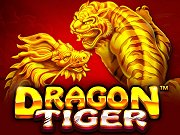 Dragon Tiger PM